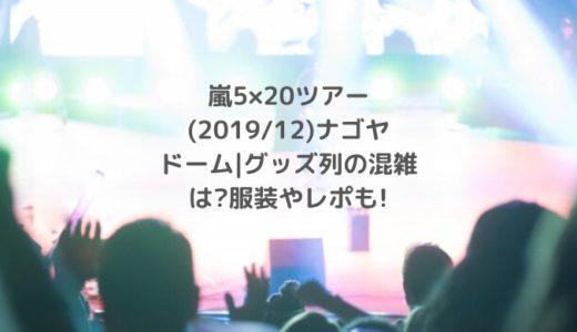 嵐5×20ツアー(2019/12)ナゴヤドーム|グッズ列の混雑は?服装やレポも!