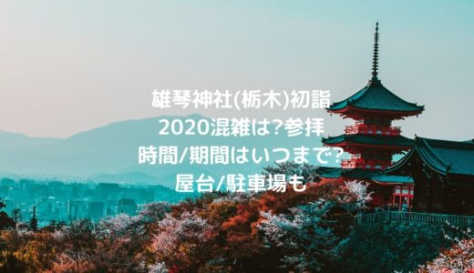 雄琴神社(栃木)初詣2020混雑は?参拝時間/期間はいつまで?屋台/駐車場も