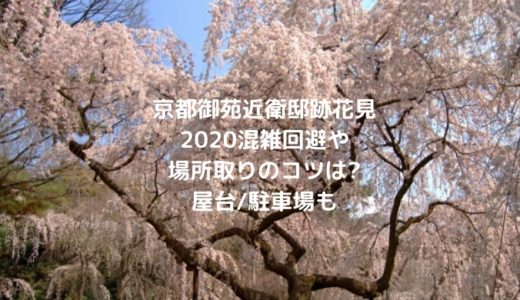 京都御苑近衛邸跡花見2020混雑回避や場所取りのコツは?屋台/駐車場も
